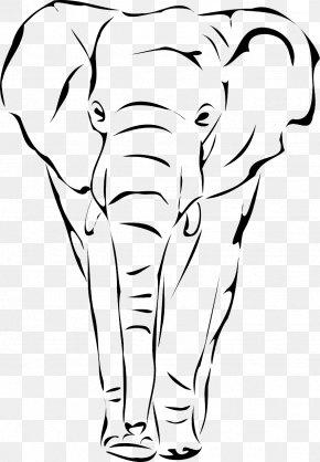 Слон - African Elephant Elephantidae Drawing Indian Elephant Clip Art PNG