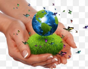 Caring For The Earth - High-definition Video Theme Natural Environment Download PNG