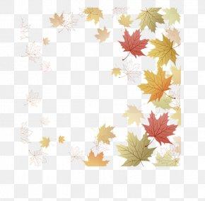 Leaf - Paper Maple Leaf Japanese Maple Autumn Leaf Color PNG