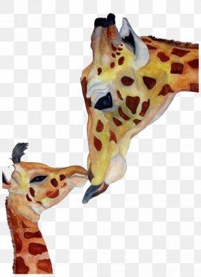 Giraffe - Northern Giraffe Creativity PNG