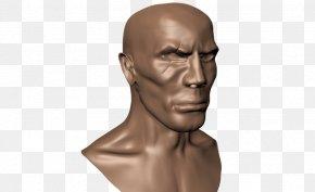 Human Head - Chin Human Head Homo Sapiens Thumb PNG
