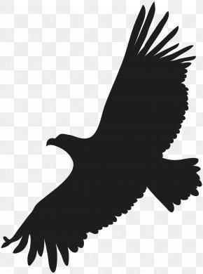 Flying Eagle Clip Art Image - Image File Formats Lossless Compression PNG