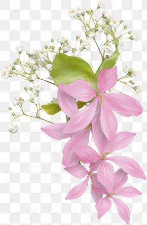Flower - Floral Design Flower Bouquet Petal Clip Art PNG