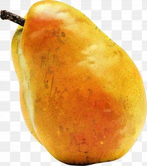 Mango Sweet Potato - Vegetables Cartoon PNG