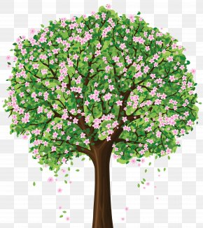 Free Spring Cliparts - Tree Spring Clip Art PNG