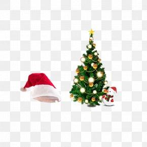 Christmas Tree Hat - Papua New Guinea Christmas Tree Gift PNG