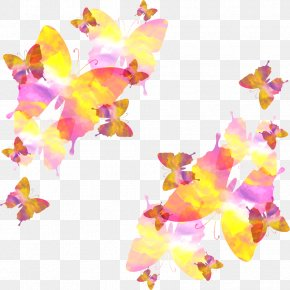 Butterfly Fly Vector - Watercolor Painting Rendering PNG