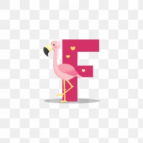 Red Big Mouth Bird F - Flamingo Royalty-free Illustration PNG