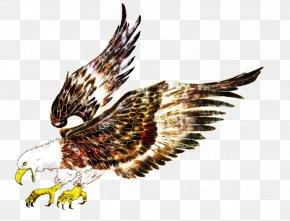 Cartoon Eagle Pattern - Eagle Bird Hawk Flight PNG