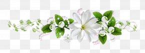 Perfume - Lotion Bath & Body Works Perfume Shiseido Floral Design PNG