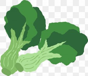 Hand Painted Green Broccoli - Broccoli Leaf Vegetable Food PNG
