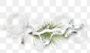 Christmas Tree - Christmas Day Clip Art Christmas Christmas Tree New Year Christmas Ornament PNG