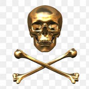 Hole Bones - Skull & Bones T-shirt Sticker PNG