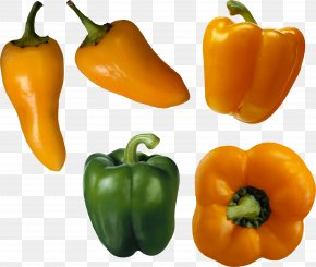 Pepper Image - Bell Pepper Organic Food Vegetable Chili Pepper PNG