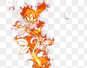 Fire Elemental - Fire Flame Clip Art PNG