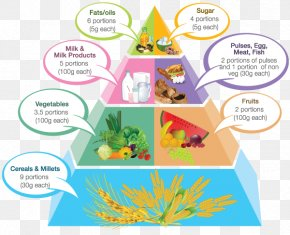 Nutritional Food Pyramid - Food Pyramid Vegetarian Cuisine Pregnancy Healthy Eating Pyramid PNG