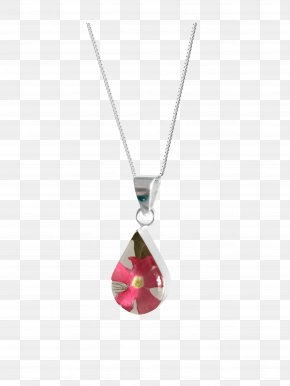 Jewellery - Jewellery Necklace Charms & Pendants Clothing Accessories Locket PNG
