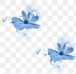 Blue Flower - Blue Rose Blue Flower PNG