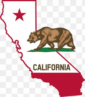 California Bear - California Prohibition In The United States Adult Use Of Marijuana Act Law Regulation PNG