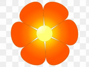 Flower Clip Art - Flower Orange Blossom Clip Art PNG