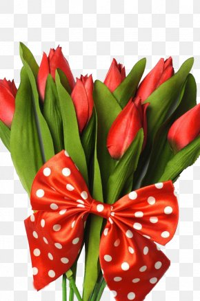 Creative Valentine's Day Tulips Flowers - Indira Gandhi Memorial Tulip Garden Flower Bouquet PNG