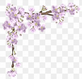 Pink Spring Branch Picture - Flower Branch Clip Art PNG