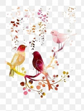 Birds - Bird Watercolor Painting Drawing Illustration PNG