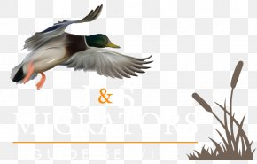 Waterfowl Hunting - Duck Goose Mallard Waterfowl Hunting PNG