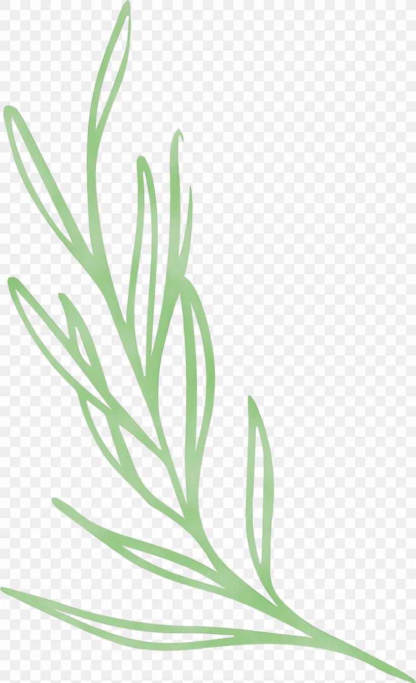 Plant Stem Leaf Grasses Leaf Vegetable Flower, PNG, 1729x2838px, Simple Leaf, Biology, Commodity, Flower, Grasses Download Free