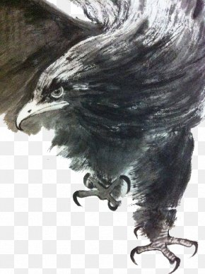 Eagle Traditional Ink Painting - U6c34u58a8u753bu9e70 Ink Wash Painting Eagle PNG