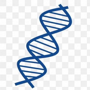 DNA Cliparts - DNA Nucleic Acid Double Helix Free Content Clip Art PNG