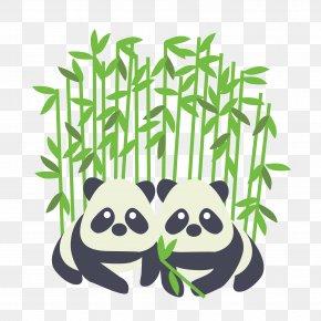 Zoo - Toronto Zoo Giant Panda Toronto Life Sticker PNG