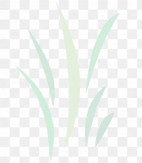 Leaf Desktop Wallpaper Plant Stem Font Close-up PNG