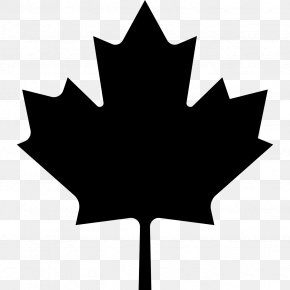 Maple Leaf Ornament - Flag Of Canada Maple Leaf Clip Art PNG