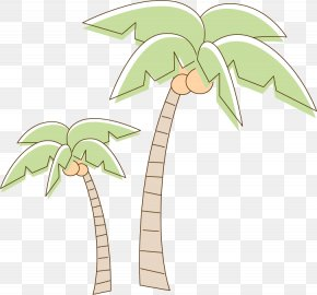 Coconut Tree - Coconut Tree Drawing PNG