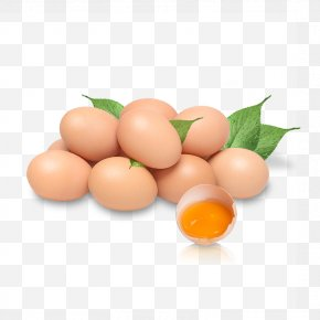 Egg - Chicken Egg Chicken Egg Nutrition PNG
