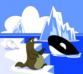 Killer Cliparts - Sea Lion Killer Whale Pinniped Clip Art PNG
