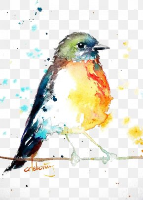 Birds - Bird European Robin Watercolor Painting Drawing PNG