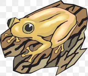 Yellow Day Frog - Frog Clip Art PNG