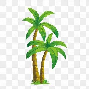 Vector Coconut Tree Free Download - Arecaceae Coconut Tree Illustration PNG