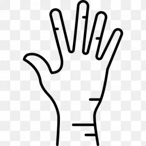 Hand - Human Body Thumb Homo Sapiens Toe Hand PNG