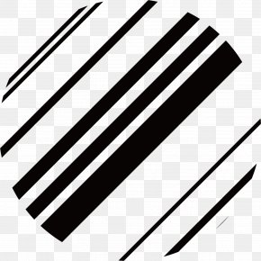 Vector Black Lines Dashed Circle - Line Circle Black And White PNG