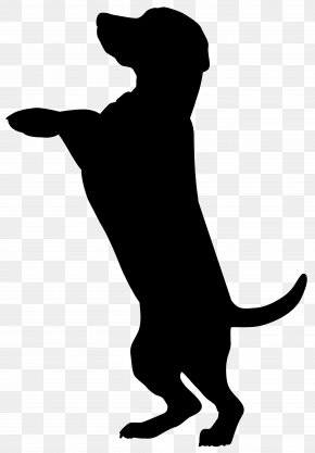 Dog Silhouette Clip Art Image - Boxer Dobermann Cat Pet Sitting Silhouette PNG
