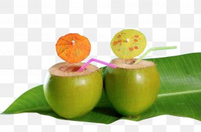 Raw Coconut Water Decoration In Kind - Cocktail Coconut Water Coconut Milk Caribbean Cuisine PNG