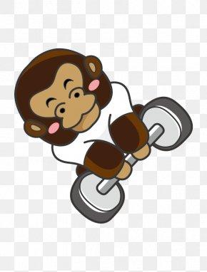 Monkey - Monkey Gorilla Cartoon PNG