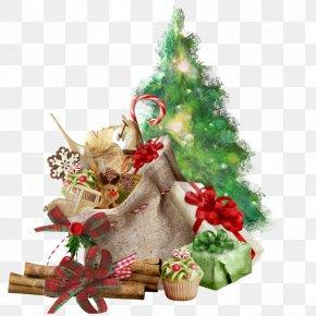 Santa Claus Christmas Tree Christmas Day New Year Image PNG