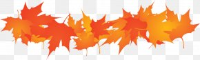 Thanksgiving Transparent - Thanksgiving Clip Art PNG
