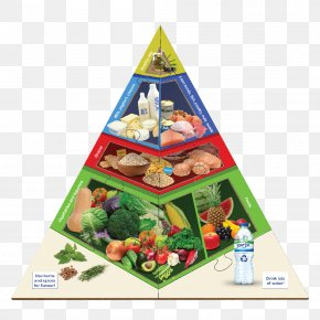 Food Pyramid - Food Pyramid Paleolithic Diet Health Vegetable PNG