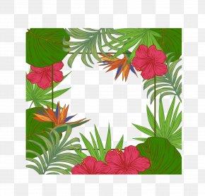 Palm Leaves Border - Leaf Arecaceae Tree Wallpaper PNG