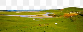 Moon Bay Attractions - Water Resources Ecoregion Nature Reserve Land Lot Grassland PNG